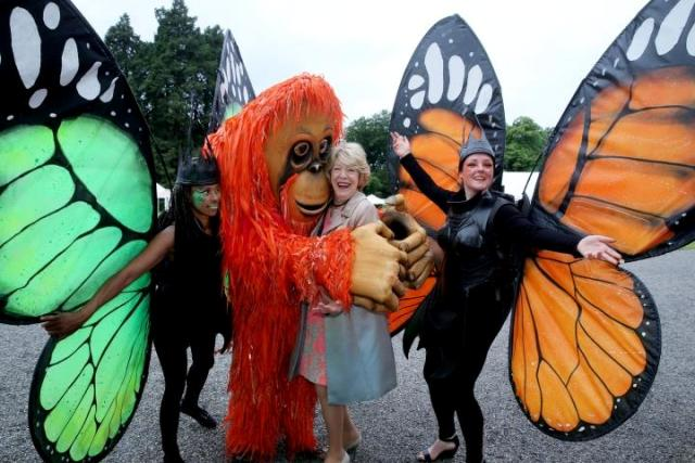 Best themed entertainment Ireland
