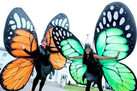 Garden Themed entertainers, butterflies entertainers