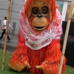 Animal themed entertainment